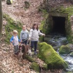 Abenteuer Spessartwald